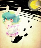 Rabbit and The Moon by sureo