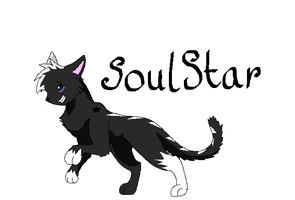 SoulStar (Hunter Clan)  .:Warrior Cats:. by Prettyxmouse