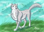 Wind is guiding me by RUNNINGWOLF-MIRARI