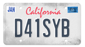 New License ID by DaisyBisley
