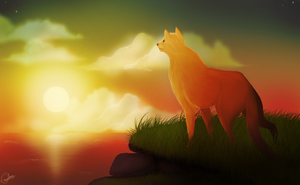 Firestar's Quest by dreamshimmer