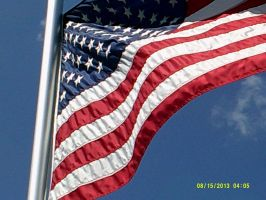 a flag in the wind by bixth