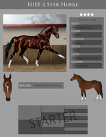 RvS Just a Boy - 4* HIEF Ref by RvS-RiverineStables