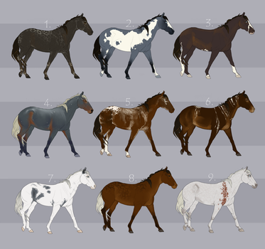 Horse Adoptables by etriers