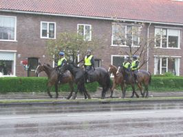 police on horses by damenster