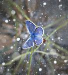 snow II by lisans