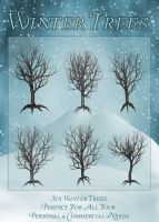 Winter Trees by zememz
