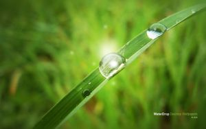 WaterDrop desktop wallpapers by JK89