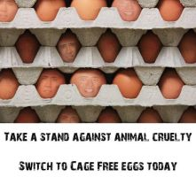 Nicholas Cage 13 - Cage Free Eggs by InternetSorcerer