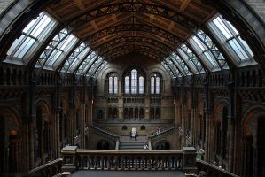The Natural History Museum by robbobert