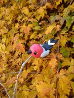 Autumn Fletchling