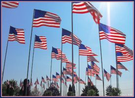 American Patriots by proud-americans