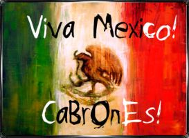 Viva Mexico Cabrones by Damagi01