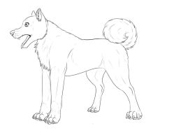 akita lineart by wolfhound56200