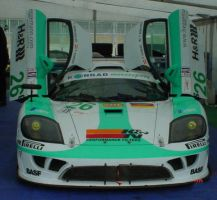 saleen by dontbemad