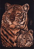 Tigers copper engraving by TheREALTwilightSpark