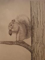 Squirrelly by themasterofnone