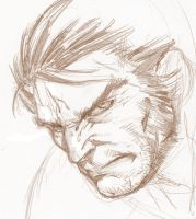 Wolverine Head by RansomGetty