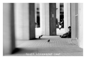 He who feeds the birds.. by straightfromcamera