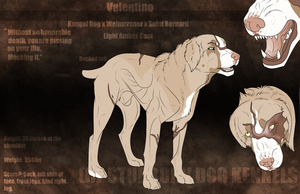 Valentino Reference (Mafia Dog) by Stubborn-Dog-Kennels