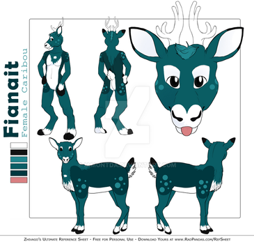 Fianait Reference Sheet by iamontda
