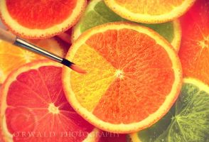 rainbow oranges by Orwald