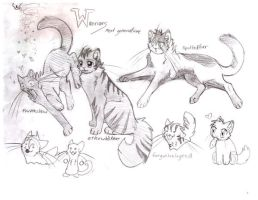 Warrior Cats OC by forgottenlegend