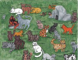 Warriors ITW cats by wolfheart by StarClan