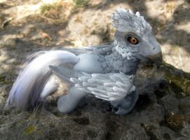 My Little Hippogriff by SalliCostumer