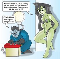 Shego and Drakken by XJKenny