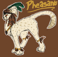 Pheasant by wolf-wishes
