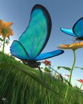 Subsurface Butterfly by darkMyke