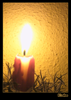 Calm - Candle by Alquimia