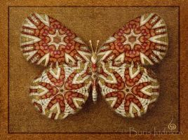 Symbol-Butterfly 15 by INDRIKoff