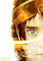 Frodo Baggins Coloured by Steve-Nice