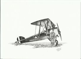 Sopwith Camel by IlRienzi