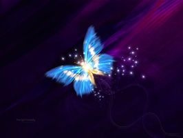 The light butterfly by mamoun