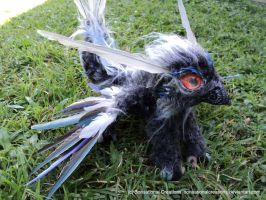Fisher Griffin - Handmade OOAK Artdoll by SonsationalCreations