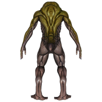 DAZ 3D (Studio): Baryolax #5: Level 1 (Back View) by Blood-PawWerewolf