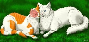 Brightheart and Cloudtail by Vialir