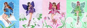 Colorful Fairies by Lily-de-Wakabayashi