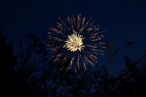 Fireworks Above Trees by wagn18