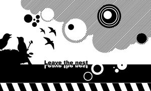 Leave the nest by madragonn