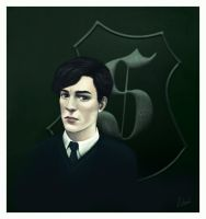 SW - Tom Riddle by traumtaenzer