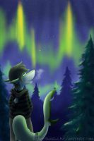 Above the Northern Lights by Robo-Shark