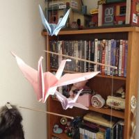 Flying Cranes by RazzEmber