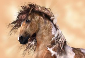 Golden Brown Paint Horse by Elle-Arden