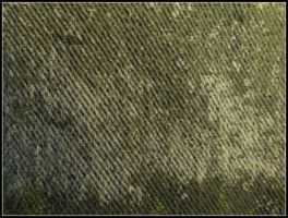 Texture6 by Gnewi-Stock