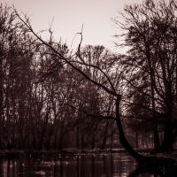 The dark side of Lambro Park by unmarco