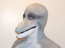 Dolphin Prosthetic by sjgarg
